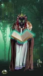 Felonious Felines Lenormand Book card