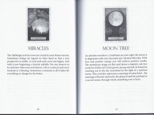Universal Love Oracle companion