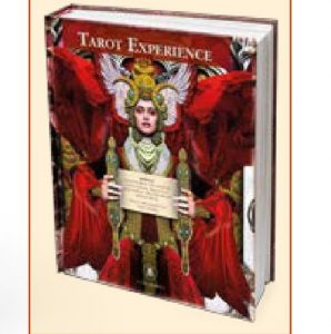 The second book, called Tarot Experience was recently delivered to backers. The third book will be green.
